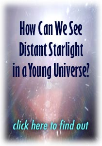 How Can We See Distant Starlight in a Young Universe